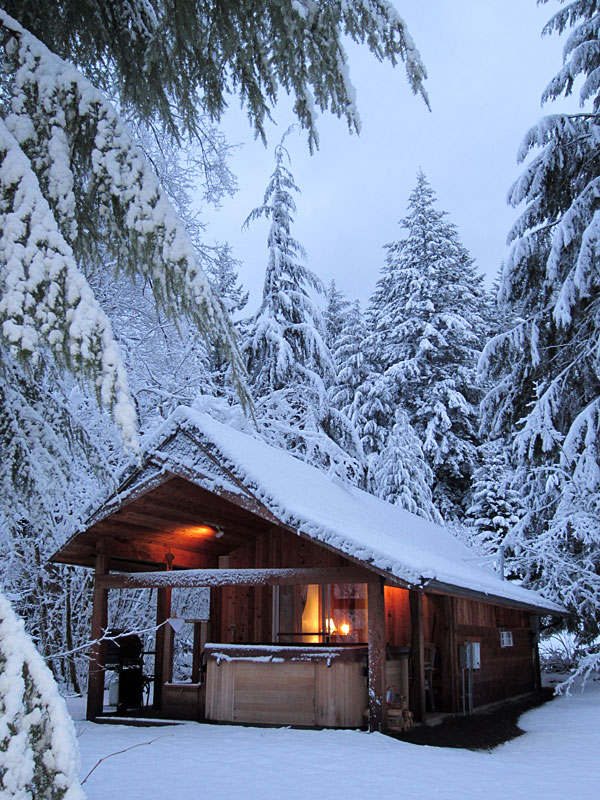 Mt Rainier National Park Lodging Romantic Rainier Cabin